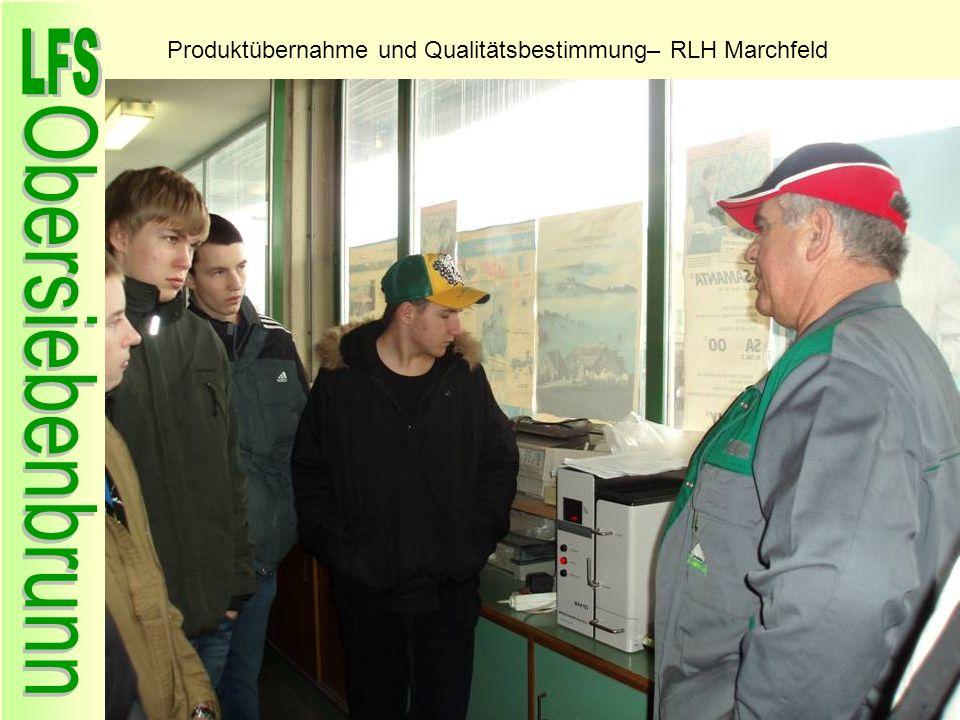 Produktübernahme und Qualitätsbestimmung– RLH Marchfeld