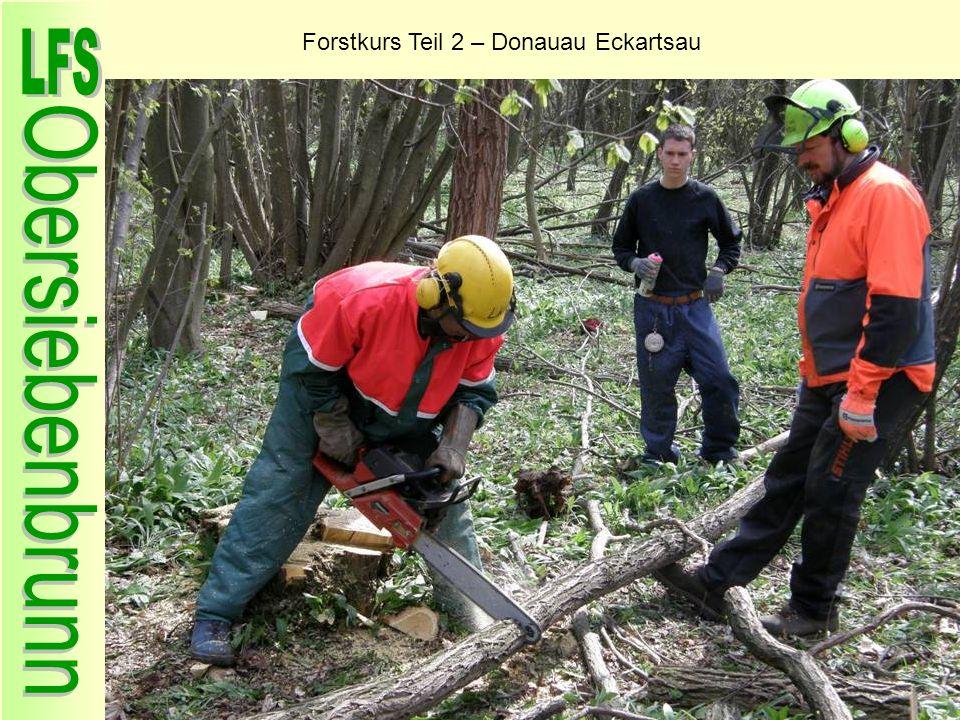 Forstkurs Teil 2 – Donauau Eckartsau