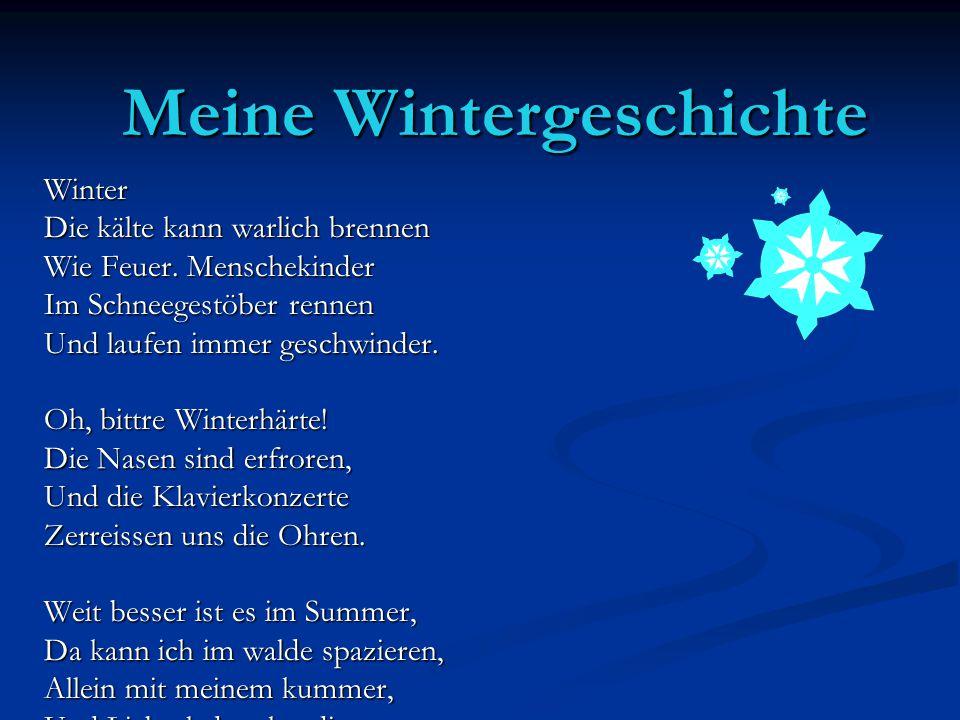 Meine Wintergeschichte