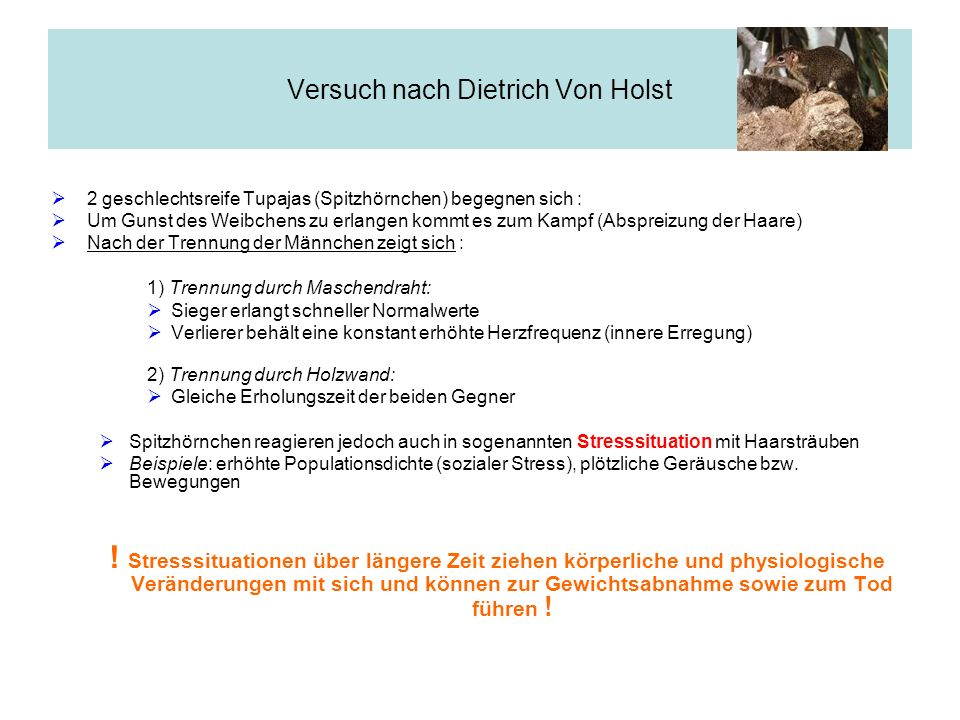 Versuch nach Dietrich Von Holst