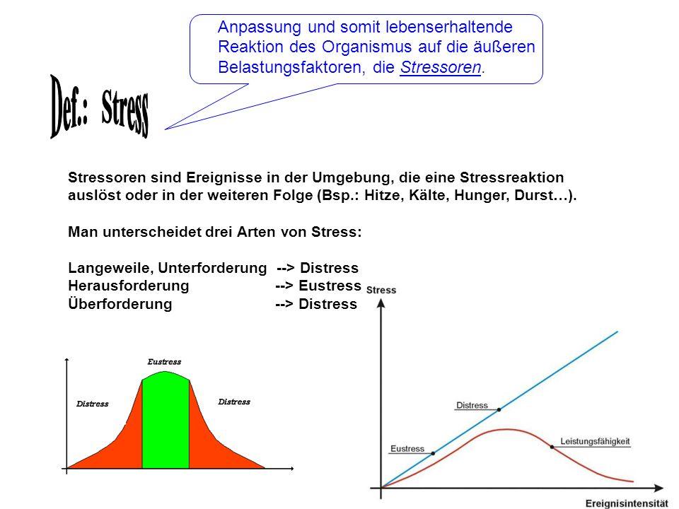 Anpassung und somit lebenserhaltende Reaktion des Organismus auf die äußeren Belastungsfaktoren, die Stressoren.