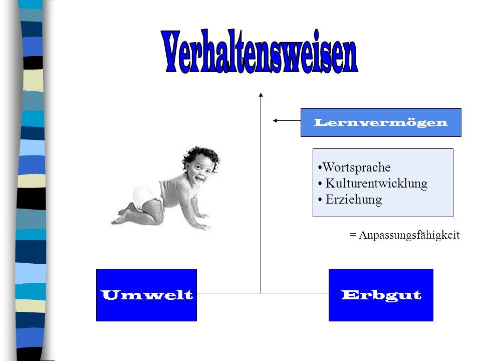 Verhaltensweisen Wortsprache Kulturentwicklung Erziehung Umwelt Erbgut