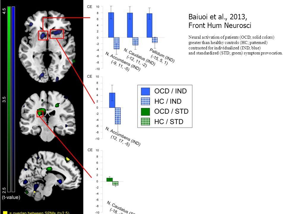 Baiuoi et al., 2013, Front Hum Neurosci