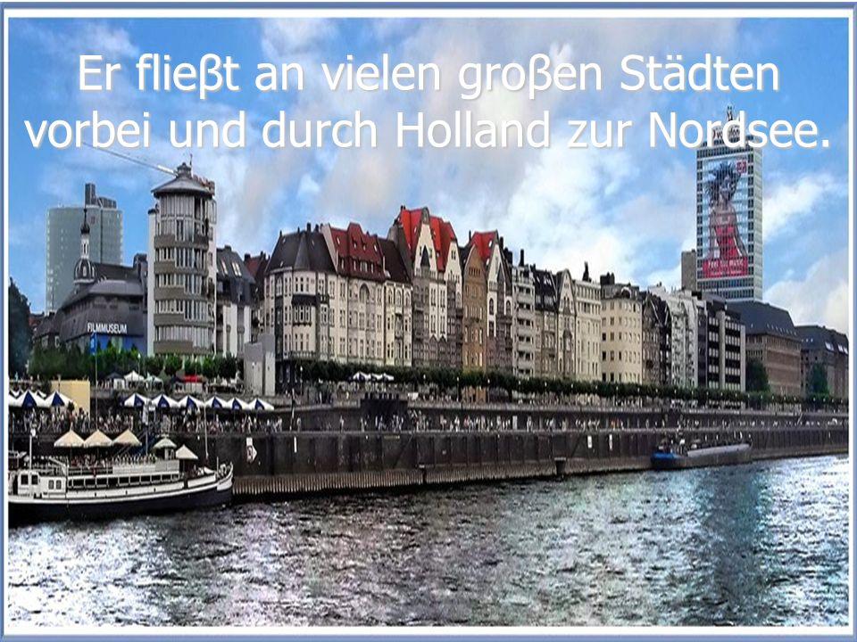 Er flieβt an vielen groβen Städten vorbei und durch Holland zur Nordsee.