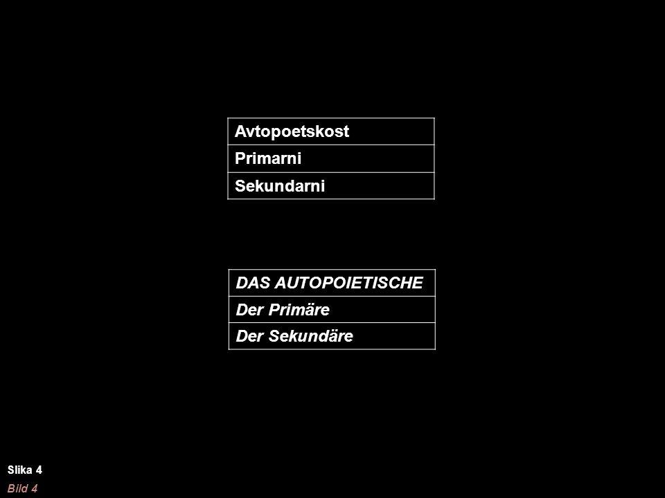 Avtopoetskost Primarni Sekundarni DAS AUTOPOIETISCHE Der Primäre