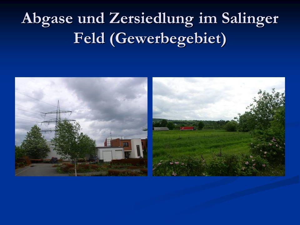 Abgase und Zersiedlung im Salinger Feld (Gewerbegebiet)