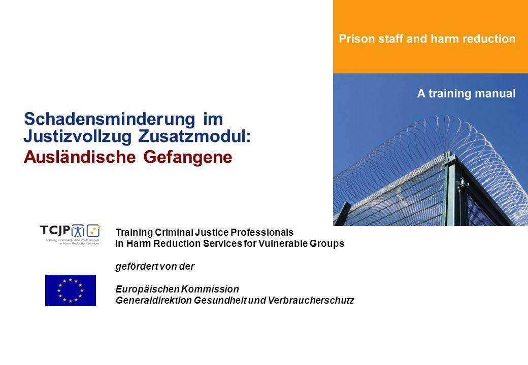Schadensminderung im Justizvollzug Zusatzmodul: Ausländische Gefangene