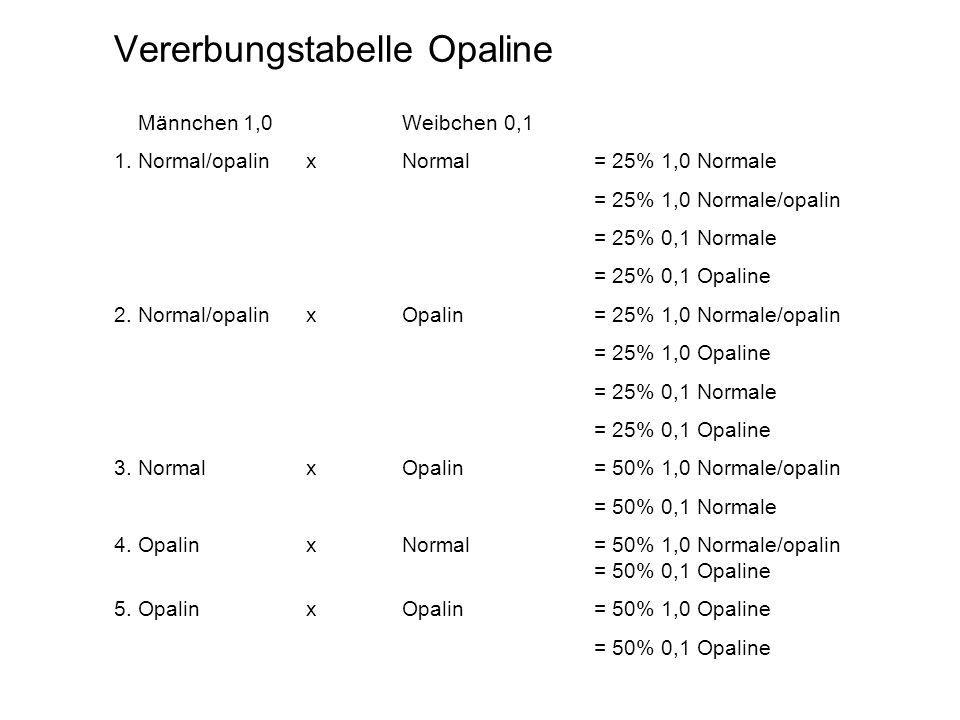 Vererbungstabelle Opaline