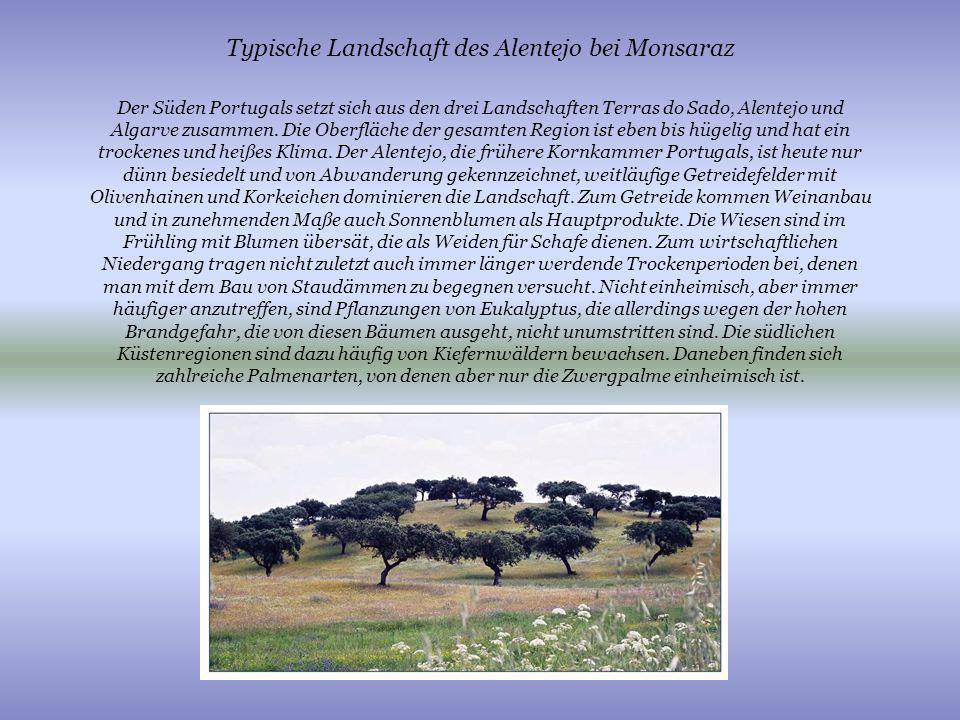 Typische Landschaft des Alentejo bei Monsaraz Der Süden Portugals setzt sich aus den drei Landschaften Terras do Sado, Alentejo und Algarve zusammen.