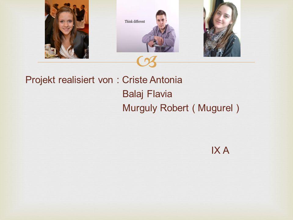 Projekt realisiert von : Criste Antonia Balaj Flavia Murguly Robert ( Mugurel ) IX A