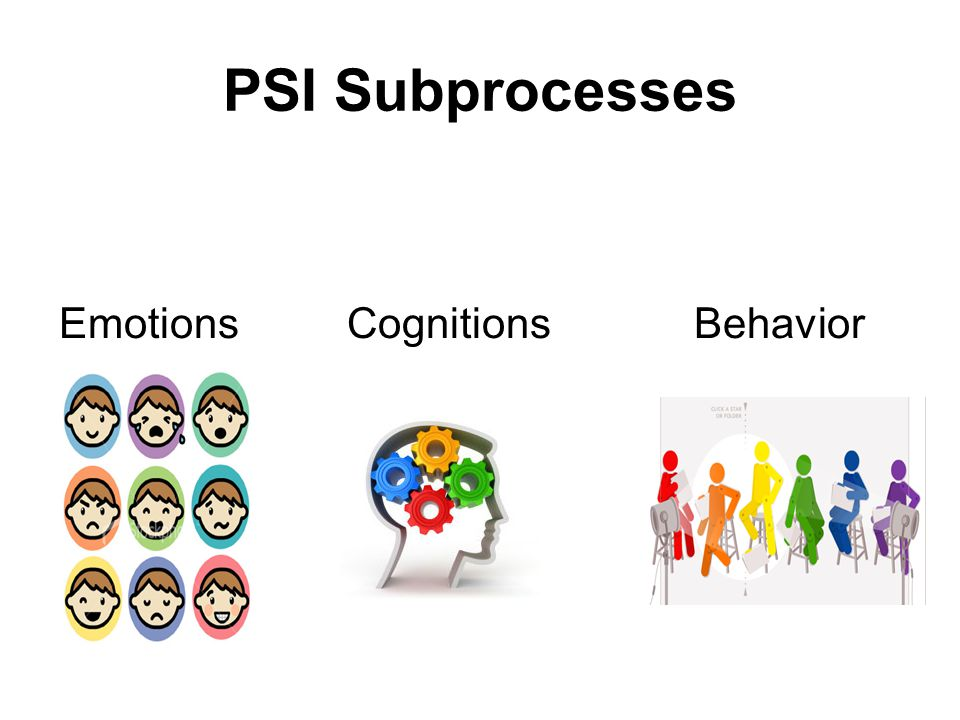 PSI Subprocesses Emotions Cognitions Behavior