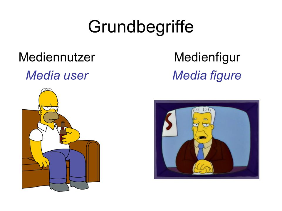 Mediennutzer Media user