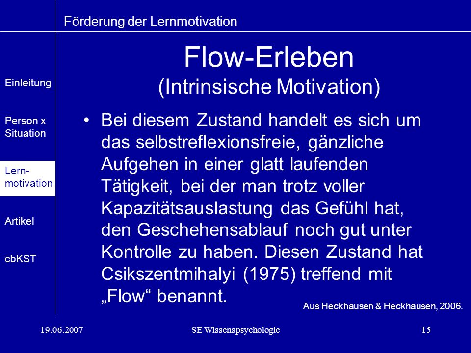 Flow-Erleben (Intrinsische Motivation)