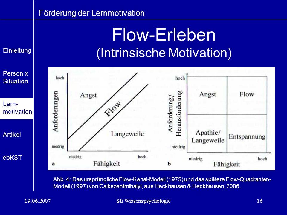 Flow-Erleben (Intrinsische Motivation)