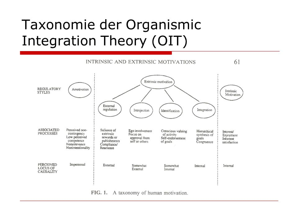 Taxonomie der Organismic Integration Theory (OIT)