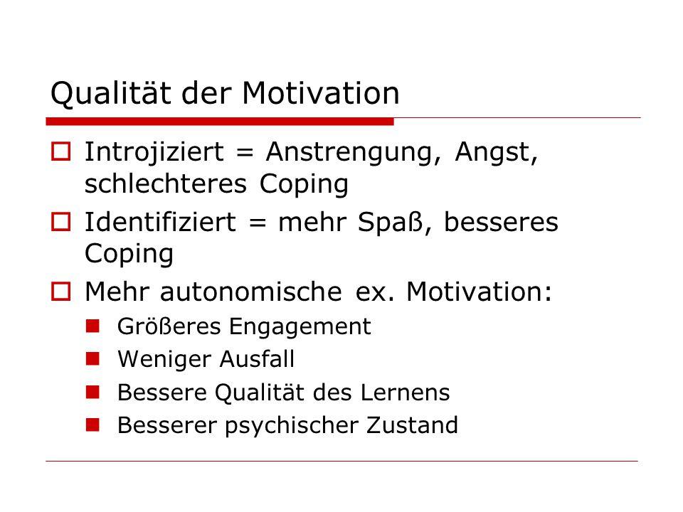 Qualität der Motivation