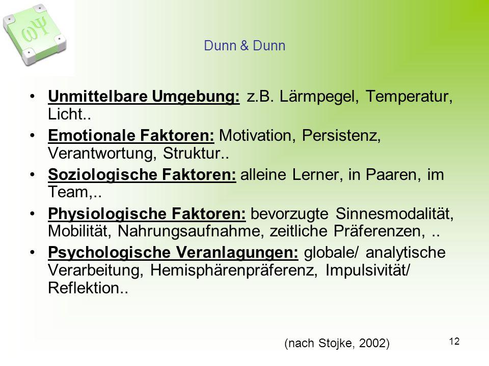 Unmittelbare Umgebung: z.B. Lärmpegel, Temperatur, Licht..