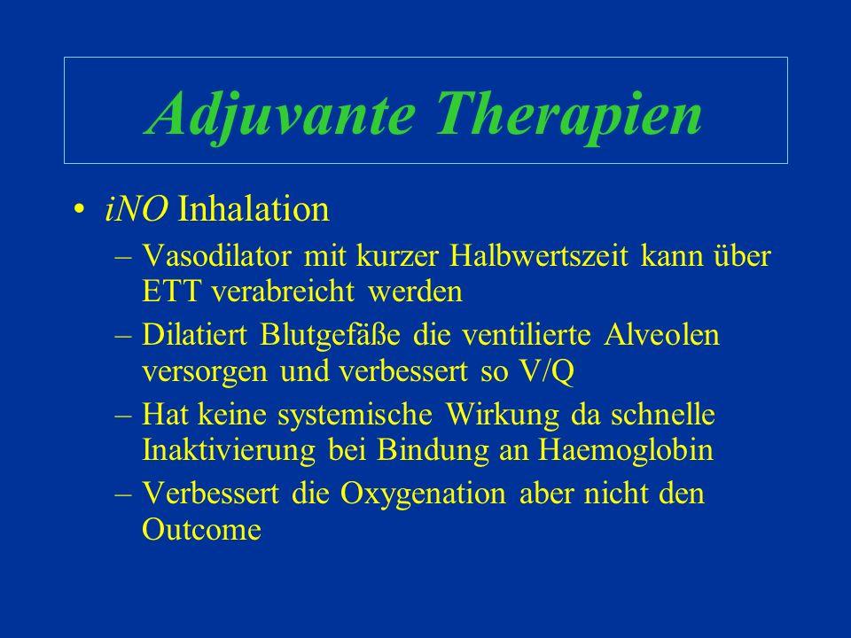 Adjuvante Therapien iNO Inhalation