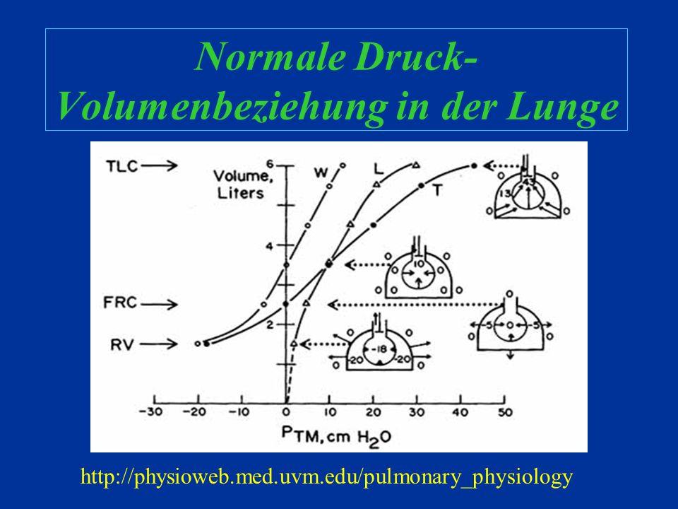 Normale Druck-Volumenbeziehung in der Lunge