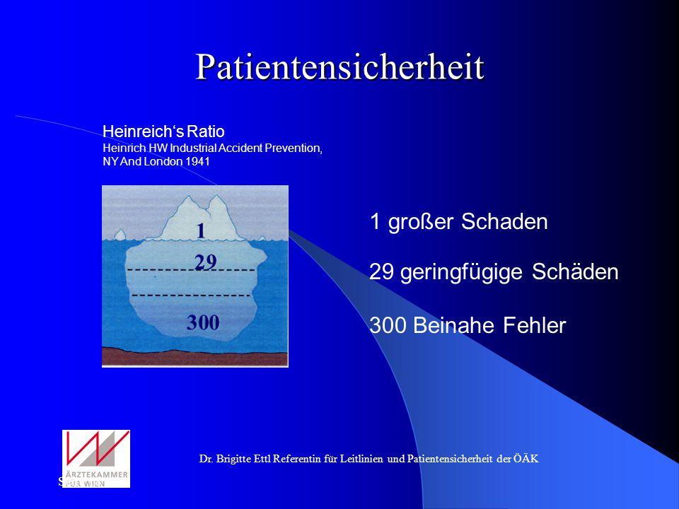 Patientensicherheit 1 großer Schaden 29 geringfügige Schäden