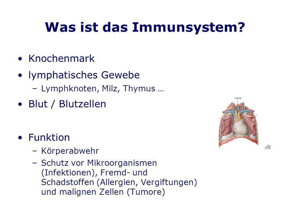 Was ist das Immunsystem