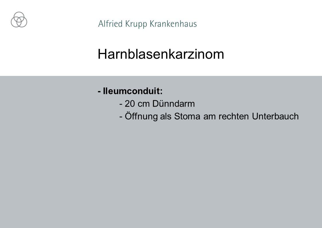 Harnblasenkarzinom - Ileumconduit: - 20 cm Dünndarm