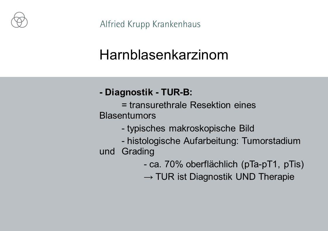 Harnblasenkarzinom - Diagnostik - TUR-B: