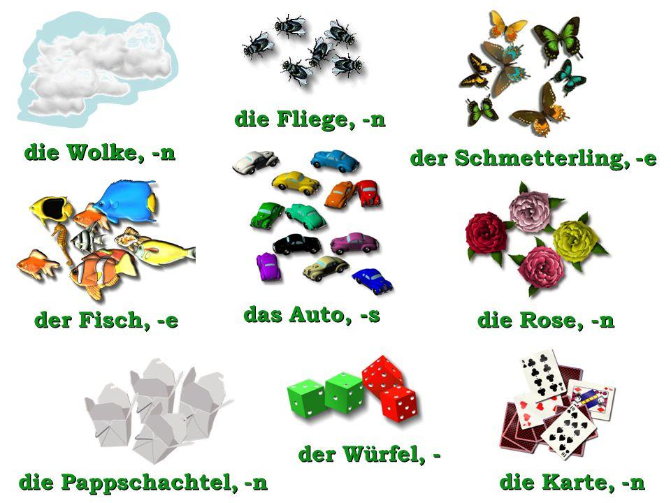 die Fliege, -n die Wolke, -n. die Wolke, -n. der Schmetterling, -e. das Auto, -s. der Fisch, -e.