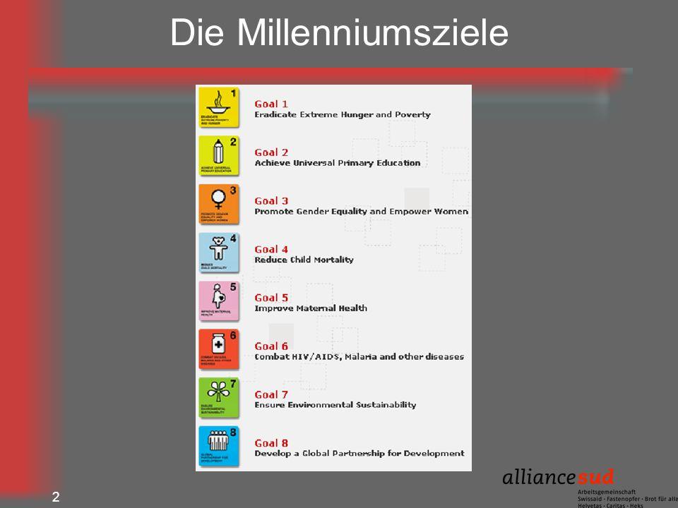 Die Millenniumsziele 2