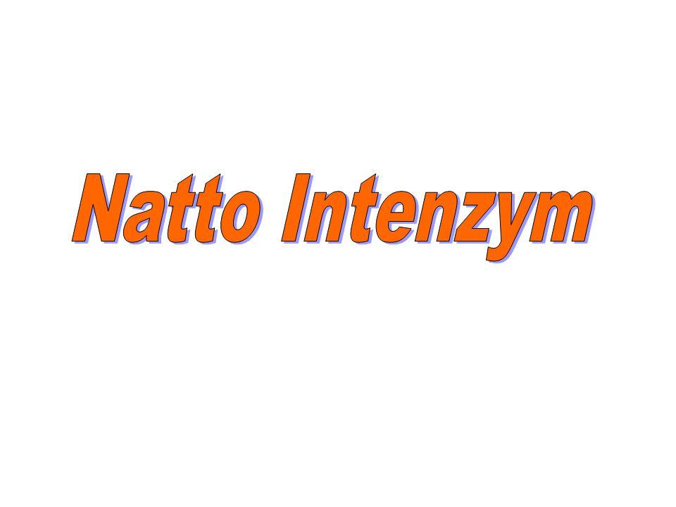 Natto Intenzym