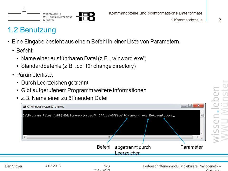 1 Kommandozeile 1.2 Benutzung. Eine Eingabe besteht aus einem Befehl in einer Liste von Parametern.