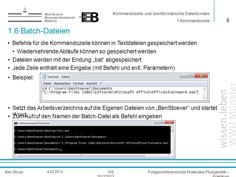 1 Kommandozeile 1.6 Batch-Dateien. Befehle für die Kommandozeile können in Textdateien gespeichert werden.