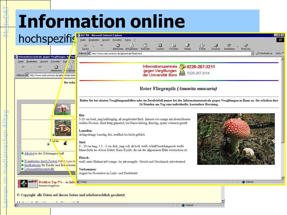 Information online hochspezifische Information