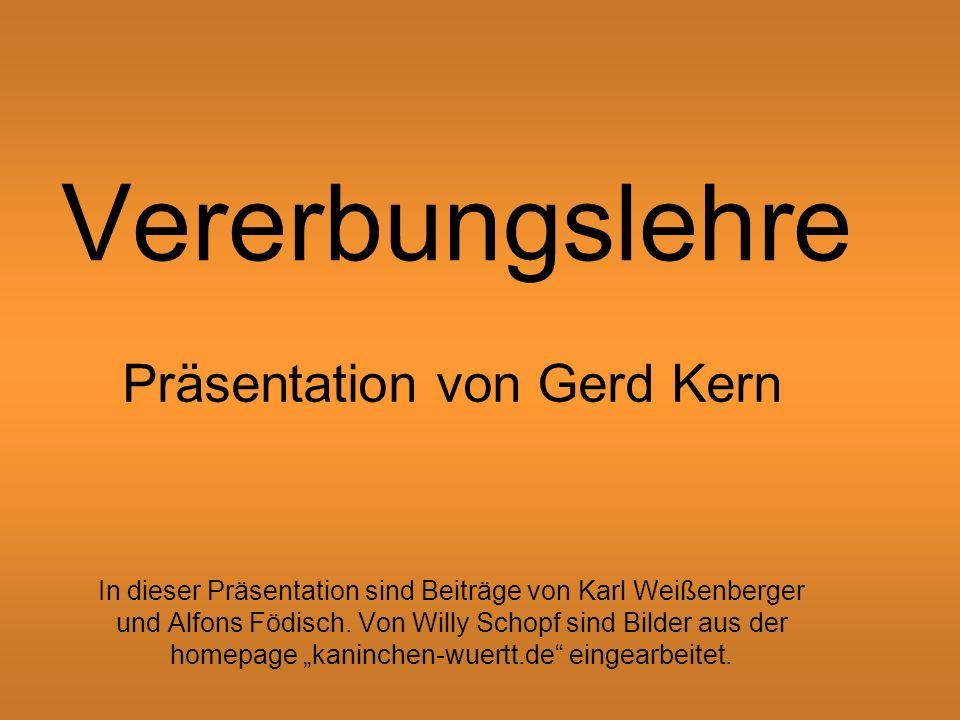 Präsentation von Gerd Kern
