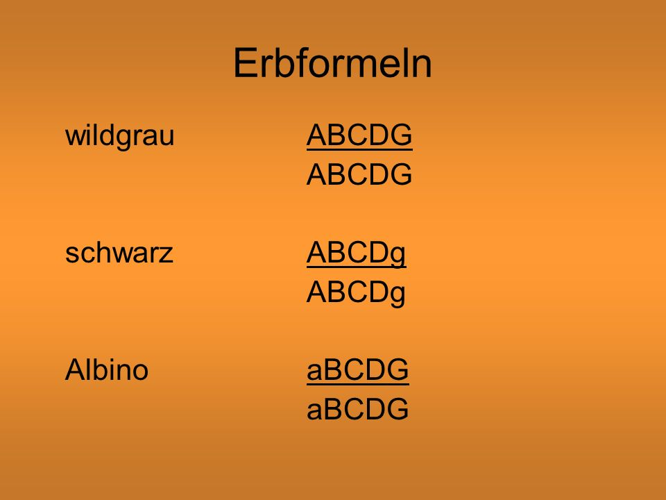 Erbformeln wildgrau ABCDG ABCDG schwarz ABCDg ABCDg Albino aBCDG aBCDG