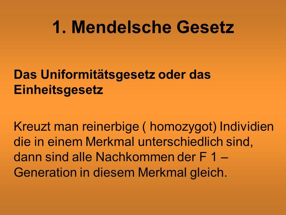 1. Mendelsche Gesetz Das Uniformitätsgesetz oder das Einheitsgesetz