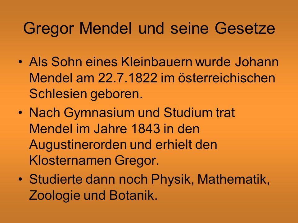 Gregor Mendel und seine Gesetze
