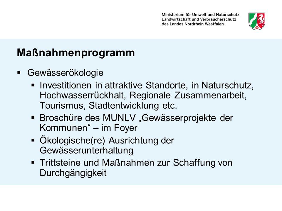 Maßnahmenprogramm Gewässerökologie