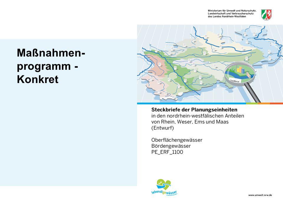 Maßnahmen-programm - Konkret