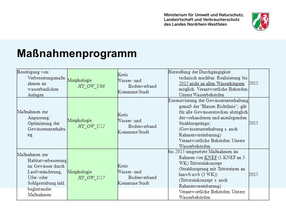 Maßnahmenprogramm Beseitigung von/ Verbesserungsmaßnahmen an wasserbaulichen Anlagen. Morphologie HY_OW_U06.