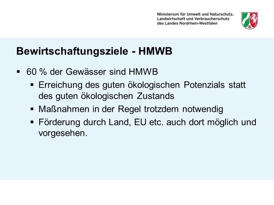Bewirtschaftungsziele - HMWB