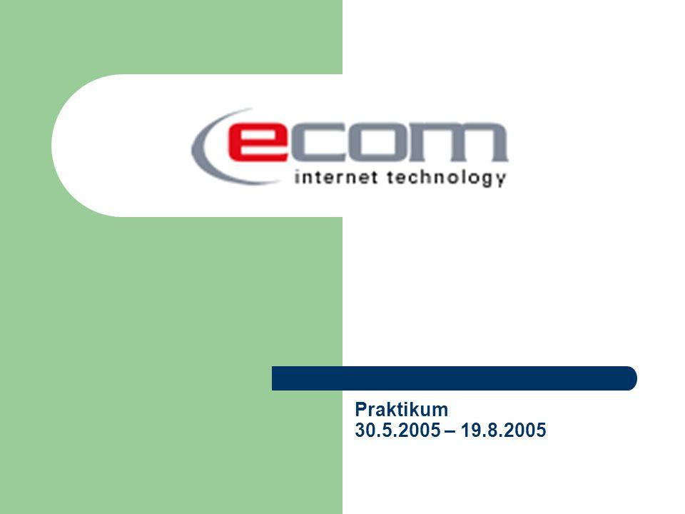 Praktikum 30.5.2005 – 19.8.2005