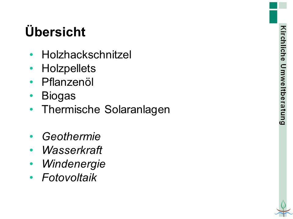 Übersicht Holzhackschnitzel Holzpellets Pflanzenöl Biogas