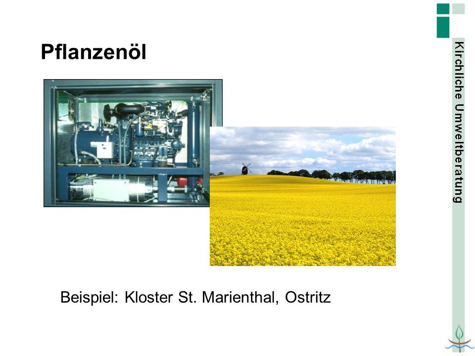 Pflanzenöl Beispiel: Kloster St. Marienthal, Ostritz