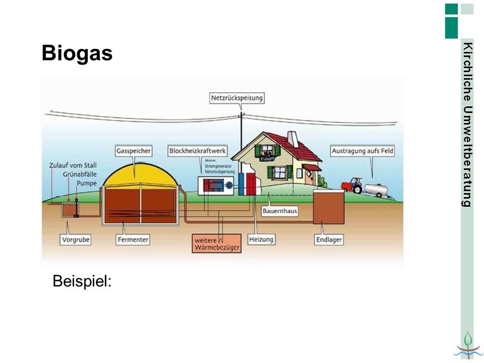 Biogas Beispiel: