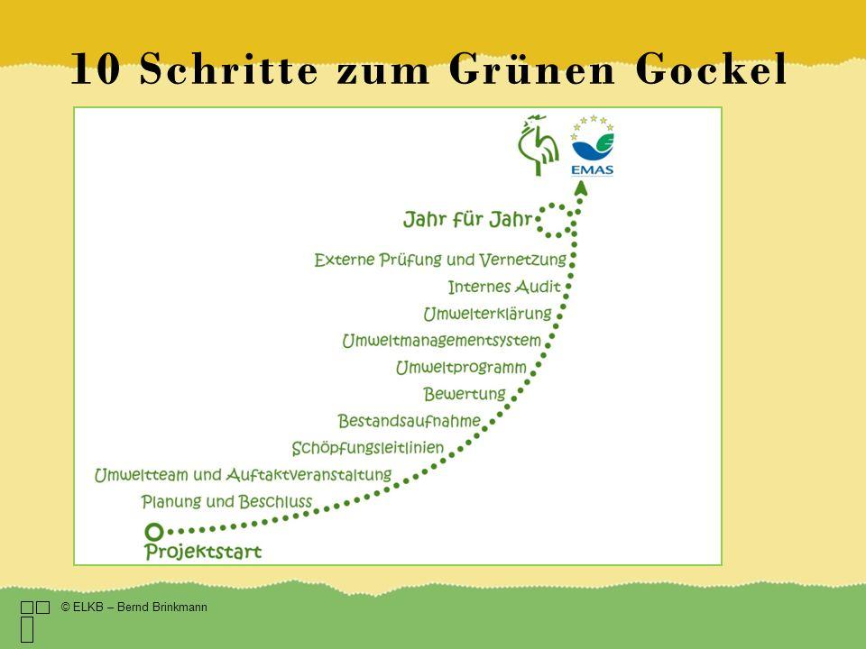 10 Schritte zum Grünen Gockel