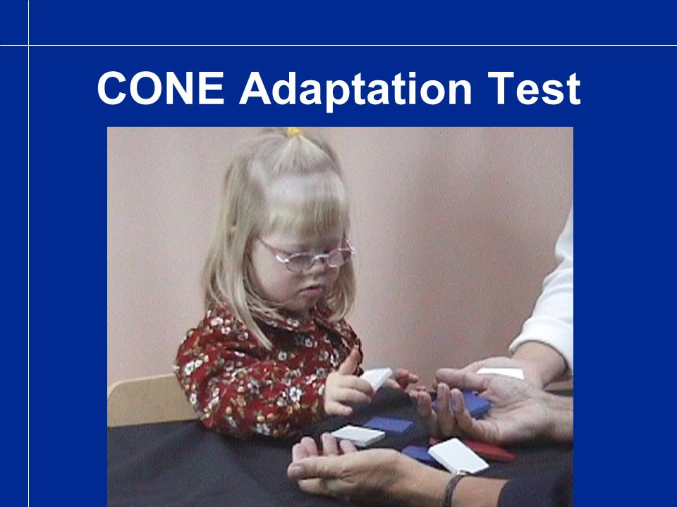 CONE Adaptation Test