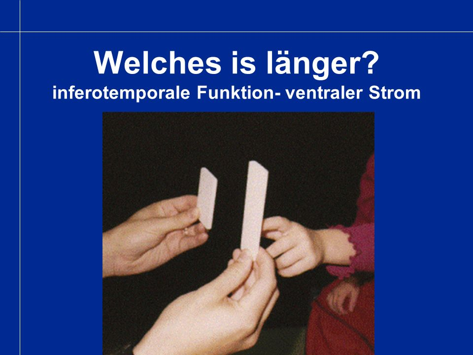 Welches is länger inferotemporale Funktion- ventraler Strom