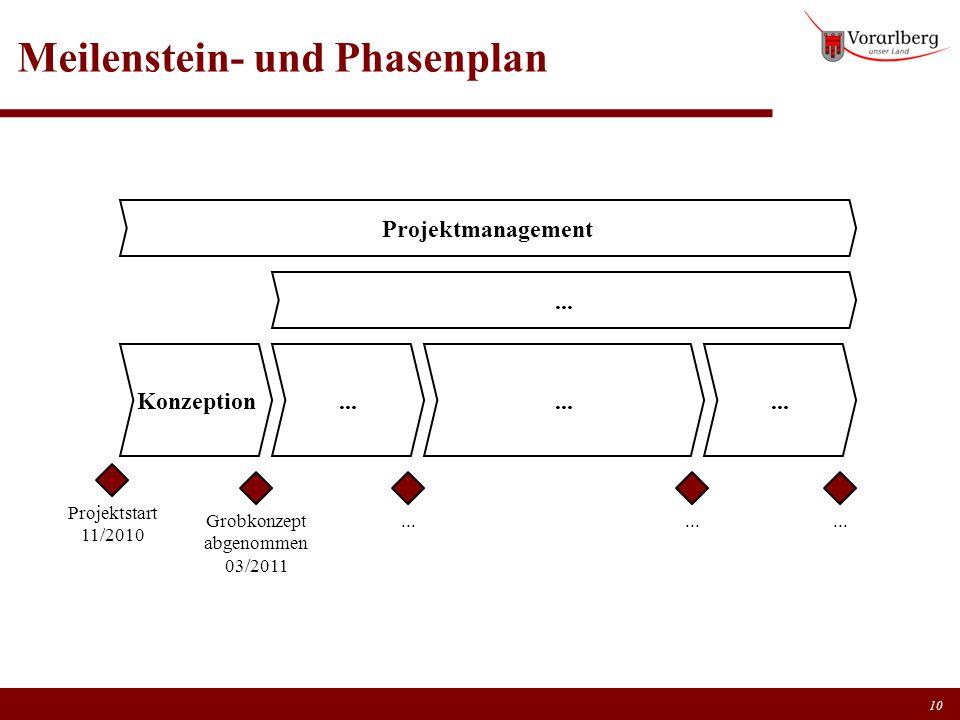Meilenstein- und Phasenplan