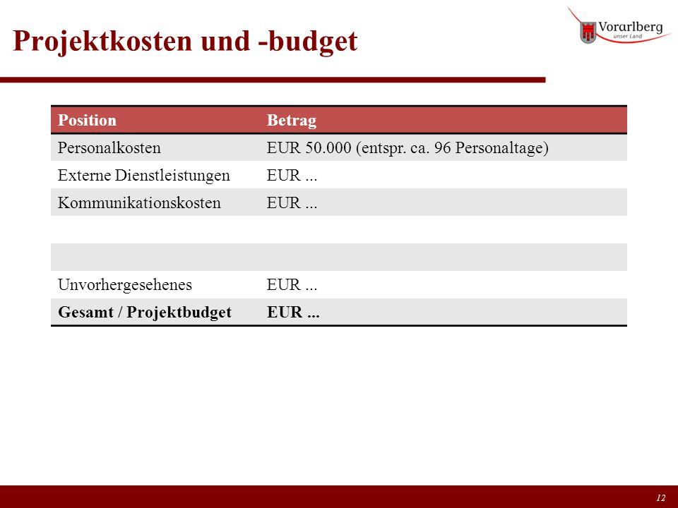 Projektkosten und -budget